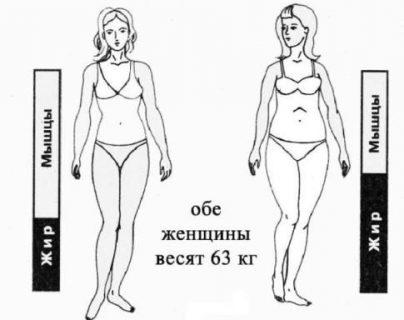 Сушка тела для девушек: жиросжигание без ущерба для мышц