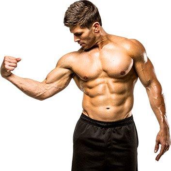 выработка тестостерона