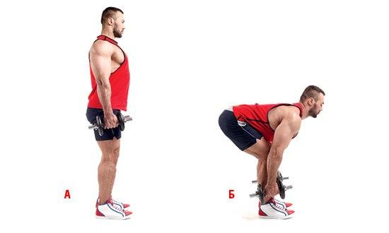 базовая упражнение мертвая тяга