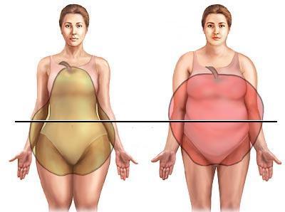почему жир откладывается на животе и бедрах