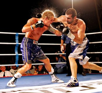 Боксёры