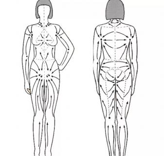 Схема движения лимфы внутри лимфатической системы и массажные линии